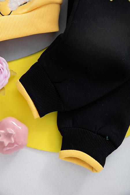 Kız Bebek Üçip Takım - 9720 (6-24 Ay)_